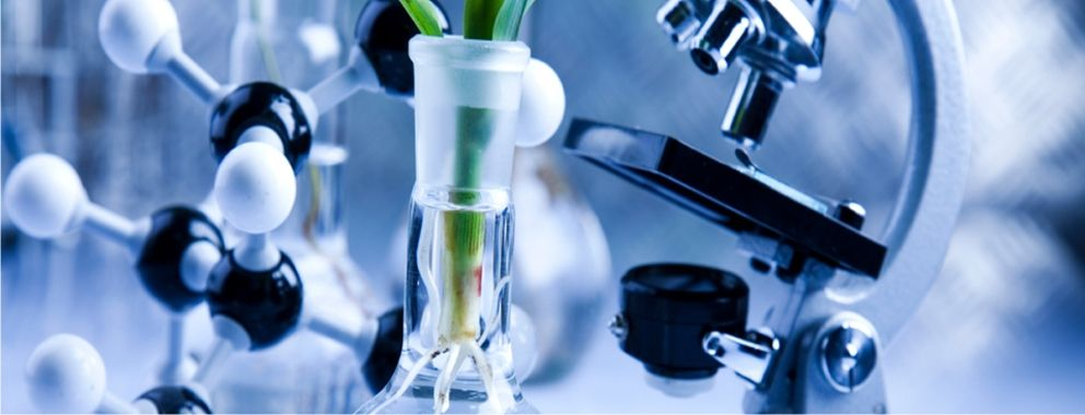 the importance of medical biotechnology essay